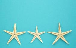 Estrellas de mar en azul Foto de archivo libre de regalías