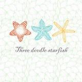 Tres estrellas de mar texturizadas garabato Fotografía de archivo libre de regalías
