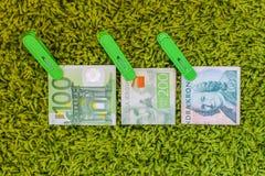 Tres euro verde de los billetes de banco 100 100 crownes suecos y 200 crownes suecos en clavijas de ropa verdes en el fondo verde Fotos de archivo