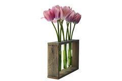 Tres floreros de tulipanes imagen de archivo