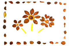 Tres flores ornamentales en marco Imagen de archivo libre de regalías