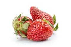 Tres fresas de jardín orgánicas aisladas en blanco Fotos de archivo