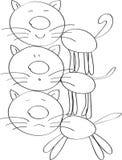 Tres gatos Foto de archivo libre de regalías