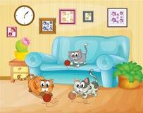 Tres gatos que juegan dentro de la casa Imágenes de archivo libres de regalías