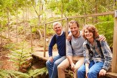 Tres generaciones de hombres en un puente en un bosque, retrato Foto de archivo
