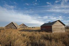 Tres graneros abandonados en caída Foto de archivo libre de regalías