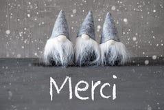 Tres Gray Gnomes, cemento, copos de nieve, medios de Merci le agradecen imagen de archivo