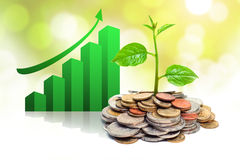 Tres growing on coins. Hands holding tress growing on coins / csr / sustainable development / economic growth stock photos
