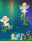 Tres hadas que vuelan en jardín en la noche stock de ilustración