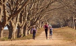 Tres hermanas de las muchachas que corrían saltar abajo de árbol alinearon el camino de tierra Imagen de archivo