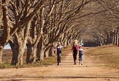 Tres hermanas de las muchachas que corren saltar abajo del árbol del camino de tierra alineado Fotos de archivo libres de regalías