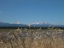Tres hermanas - Oregon Imágenes de archivo libres de regalías