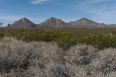 Tres Hermanas pasmo górskie w południowo-zachodni Nowym - Mexico i pustynia szczotkujemy Obraz Stock