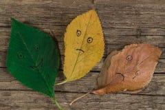 Tres hojas de otoño coloridas con diversas emociones - alegres, indiferente, triste en el fondo de madera Fotografía de archivo libre de regalías