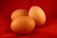 Tres huevos Imágenes de archivo libres de regalías