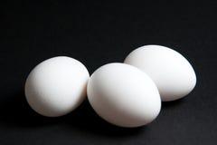 Tres huevos blancos en fondo negro Foto de archivo libre de regalías