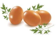 Tres huevos con perejil. Imagen de archivo