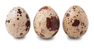 Tres huevos de codornices aislados en el fondo blanco Imagen de archivo libre de regalías