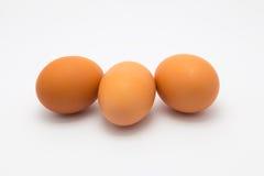 Tres huevos de gallina Fotografía de archivo libre de regalías