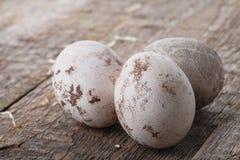 Tres huevos de Pascua Foto de archivo