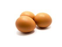 Tres huevos en el fondo blanco Foto de archivo libre de regalías