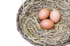 Tres huevos en la paja Imagenes de archivo