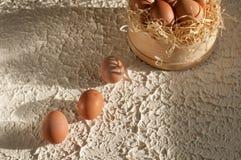 tres huevos en las pantallas por completo de huevos en la madera Fotografía de archivo libre de regalías