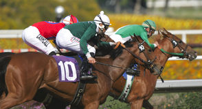 Tres jinetes y caballos que compiten con Imágenes de archivo libres de regalías