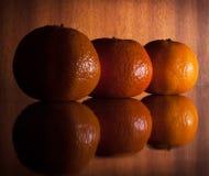 Tres mandarinas Fotos de archivo libres de regalías