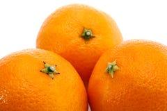 Tres mandarines maduros Fotografía de archivo libre de regalías