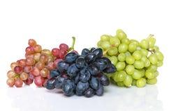 Tres manojos de uvas Fotos de archivo