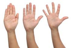 Tres manos abiertas en diversas posiciones Fotografía de archivo libre de regalías