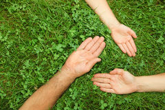 Tres manos en hierba Imagenes de archivo