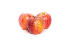 Tres manzanas de la gala Fotografía de archivo libre de regalías