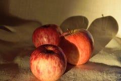Tres manzanas en el paño imágenes de archivo libres de regalías