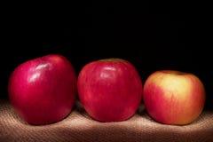 Tres manzanas en fondo negro imagen de archivo