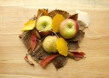 Tres manzanas en hojas de otoño Imagen de archivo libre de regalías
