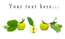 Tres manzanas maduras hermosas con las hojas Imagen de archivo
