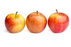 Tres manzanas reales de la gala Foto de archivo