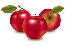 Tres manzanas rojas. Foto de archivo