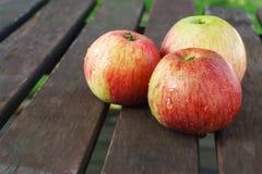 Tres manzanas rojas Fotos de archivo