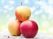 Tres manzanas rojas en un vector de madera Imagen de archivo