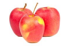 Tres manzanas rojas frescas Fotos de archivo