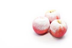 Tres manzanas sabrosas debajo de la nieve en un fondo aislado Foto de archivo libre de regalías