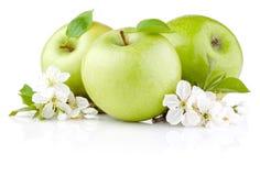 Tres manzanas verdes con la hoja y las flores Foto de archivo libre de regalías