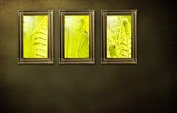 Tres marcos en la pared Imágenes de archivo libres de regalías