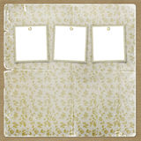 Tres marcos para las fotos en el fondo floral Fotografía de archivo