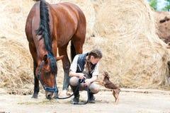Tres mejores amigos Adolescente, caballo y pequeño perro Foto de archivo libre de regalías