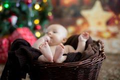 Tres meses lindos del bebé con el sombrero del oso en una cesta, durmiendo Imagenes de archivo