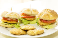 Tres mini hamburguers hechos en casa Imagen de archivo libre de regalías